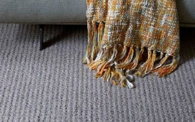 Win an on-trend grey Jacaranda Rug in our latest competition